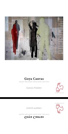csm_DFA-Sample-GoyaCanvas_01_cb60113afc