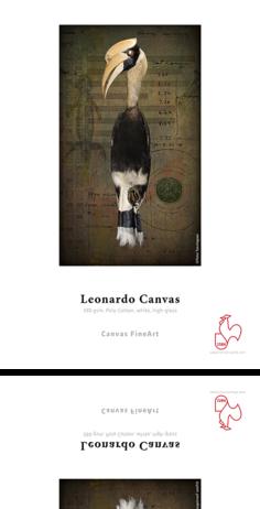 csm_DFA-Sample-LeonardoCanvas_02_dc680bd896